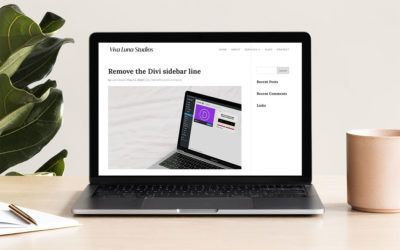 How to remove the grey sidebar line from your Divi blog post layout